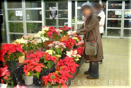 植物園_a0053987_752241.jpg