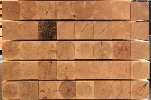南ヶ丘県営住宅:木材検査_e0054299_1026520.jpg