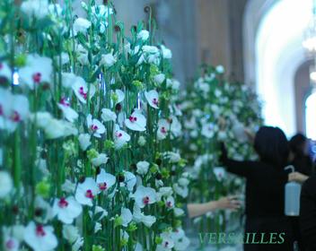 ノエルのパリ☆花研修報告。ヴェルサイユ花装飾前編_b0111306_23285519.jpg