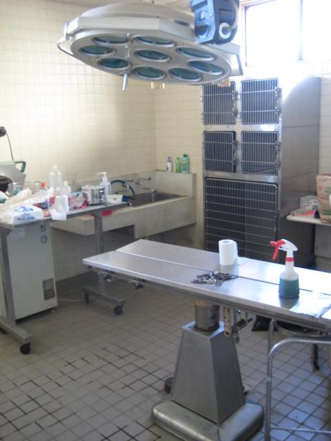 センターレポート(2008年12月18日)_f0078320_0514447.jpg