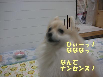c0179136_20455169.jpg
