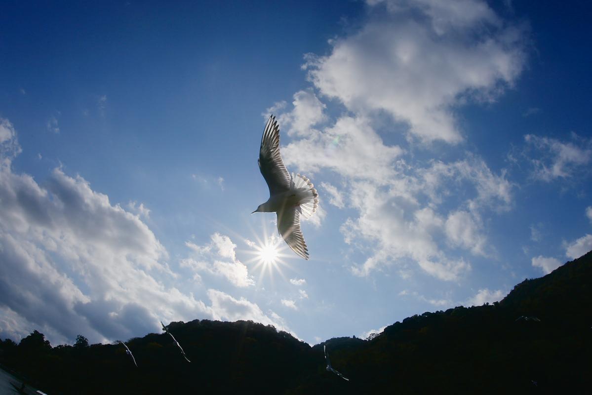 京都 嵐山 3_f0021869_21383365.jpg