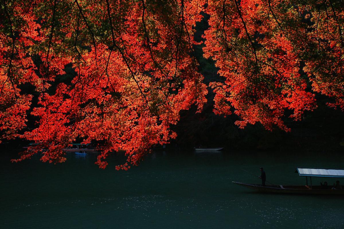 京都 嵐山 3_f0021869_21402179.jpg