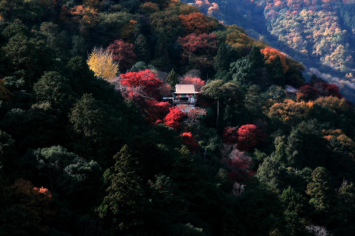 京都 嵐山 3_f0021869_21421932.jpg