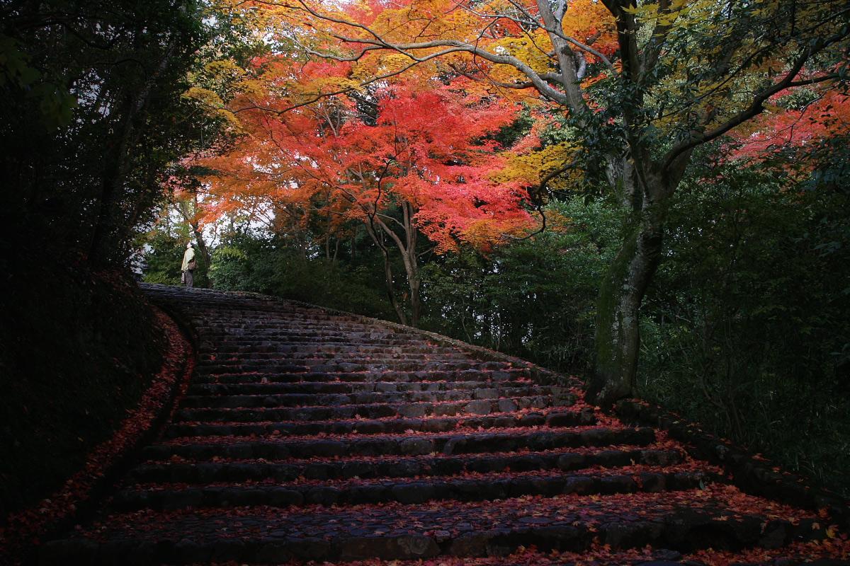京都 嵐山 3_f0021869_21471353.jpg
