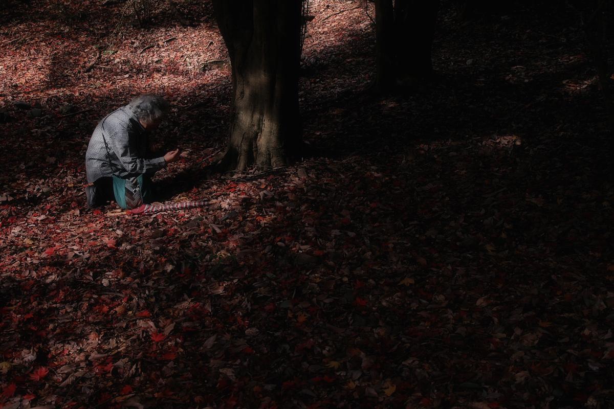 京都 嵐山 3_f0021869_21481612.jpg