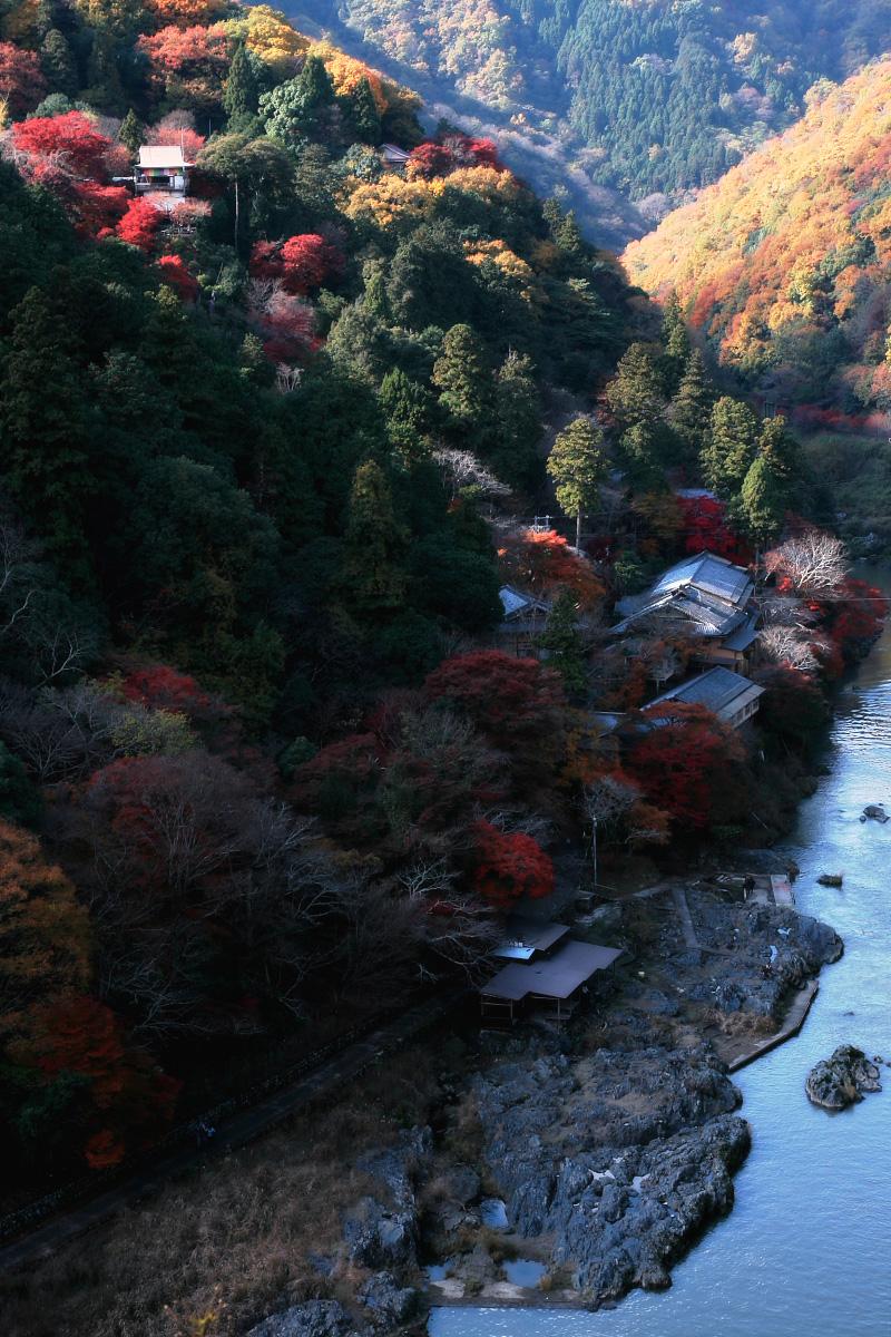 京都 嵐山 3_f0021869_21502430.jpg