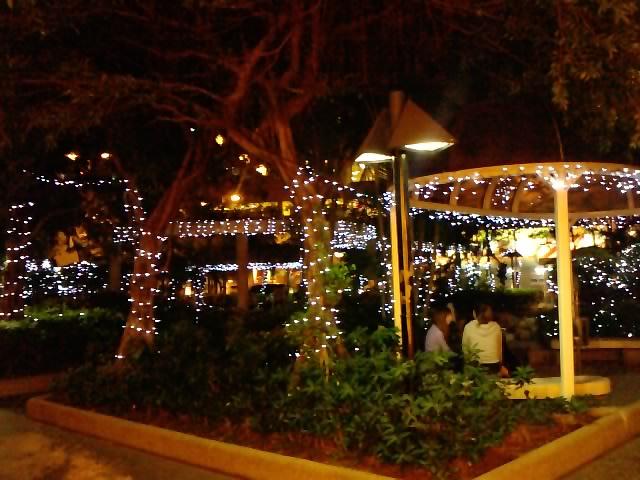 クリスマスイルミネーション 9_e0155771_22264577.jpg