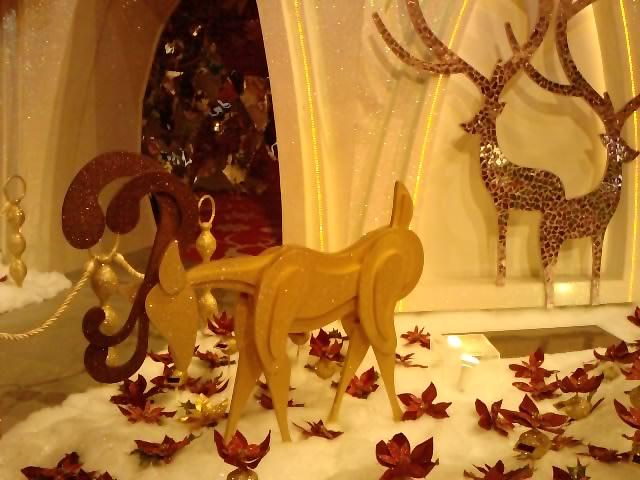 クリスマスイルミネーション 8_e0155771_2274581.jpg