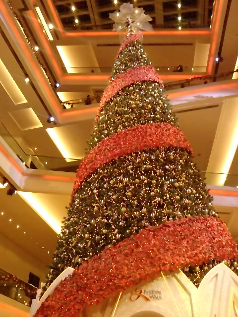 クリスマスイルミネーション 8_e0155771_2291310.jpg