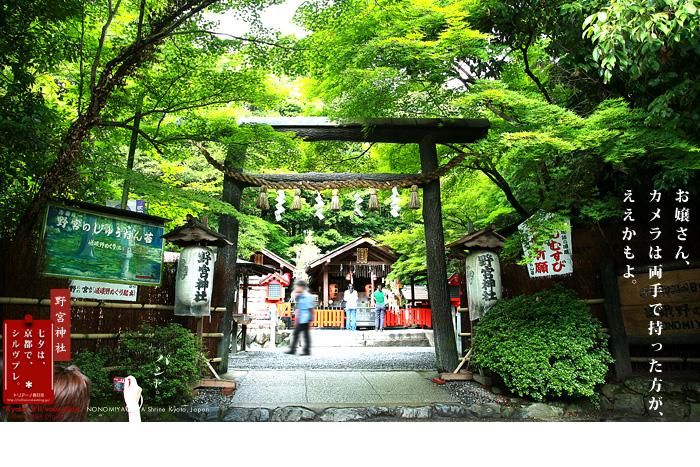 京都シルヴプレ 148   野宮神社 (京都メーター付)_f0038408_13584454.jpg