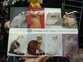 TICA&GCU CAT SHOW_e0033609_16345067.jpg