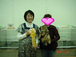 TICA&GCU CAT SHOW_e0033609_1702789.jpg