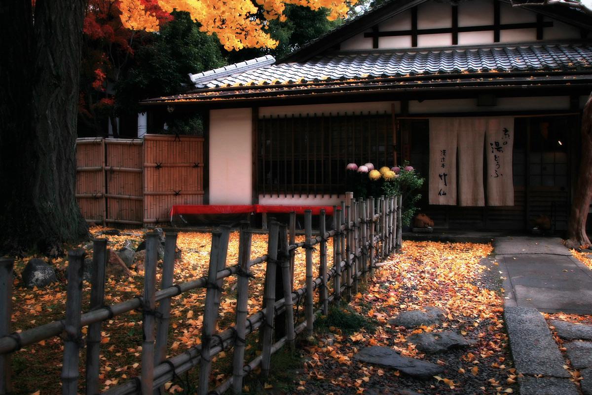 京都 嵐山 4_f0021869_21463491.jpg