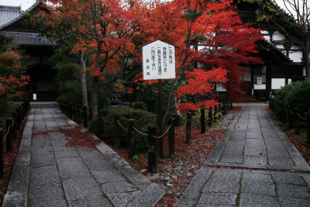 京都 嵐山 4_f0021869_21465471.jpg