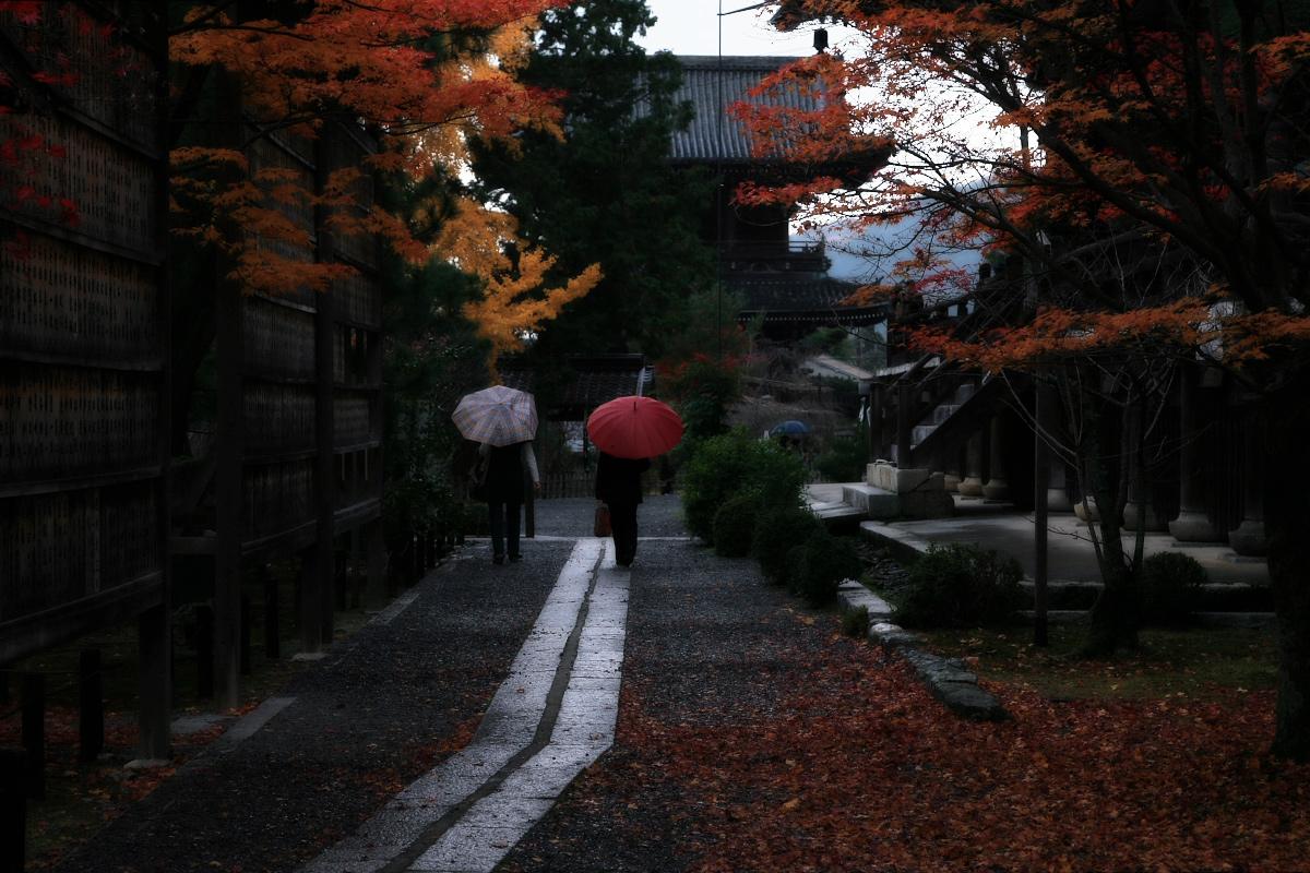 京都 嵐山 4_f0021869_21484715.jpg