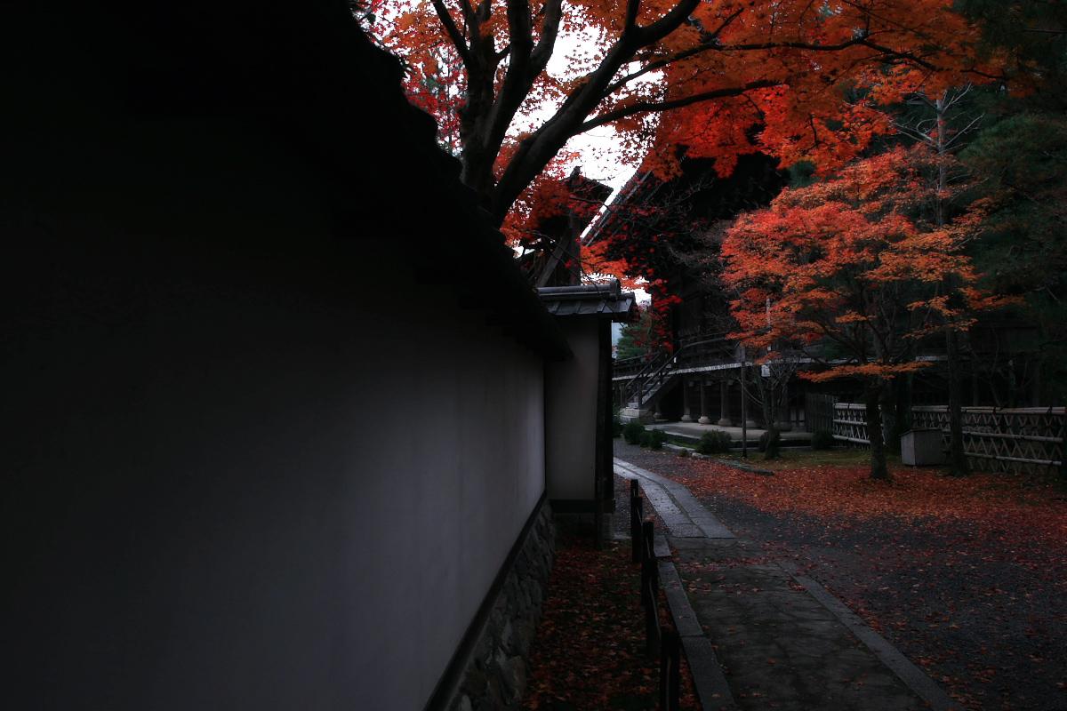 京都 嵐山 4_f0021869_21491186.jpg