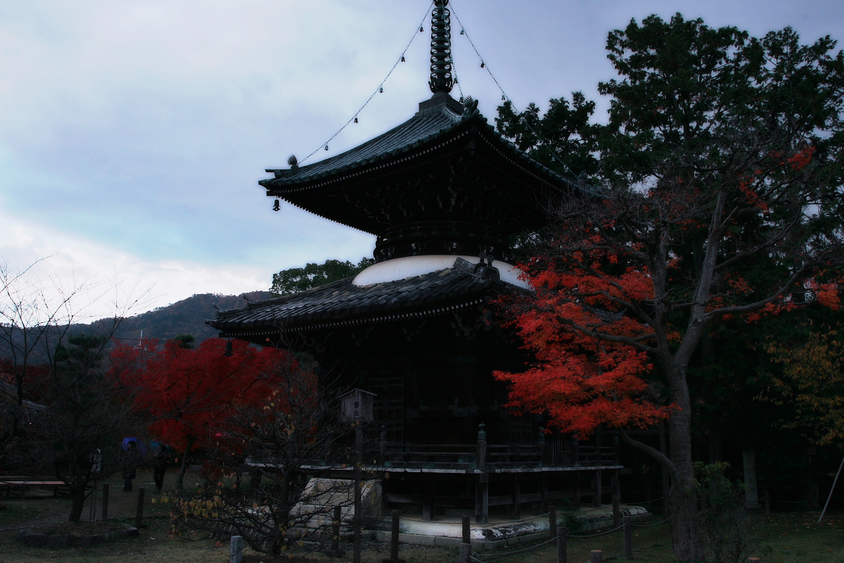京都 嵐山 4_f0021869_21502092.jpg