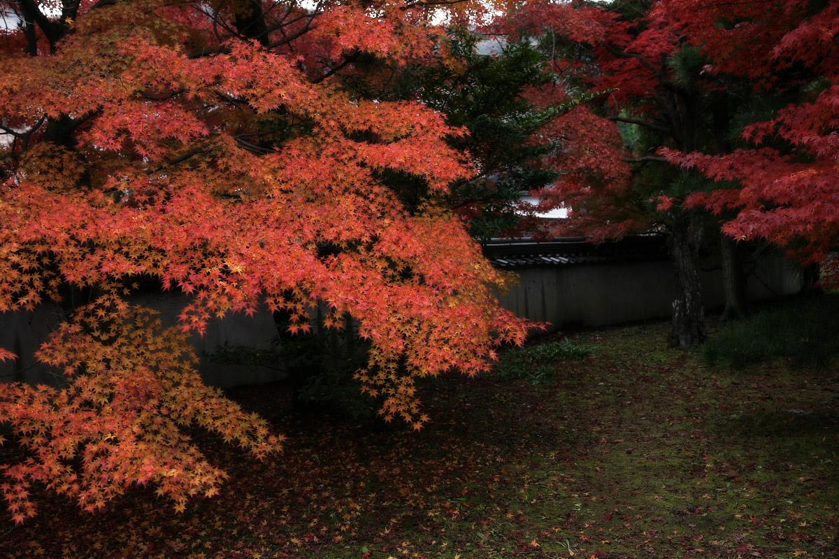 京都 嵐山 4_f0021869_21522950.jpg