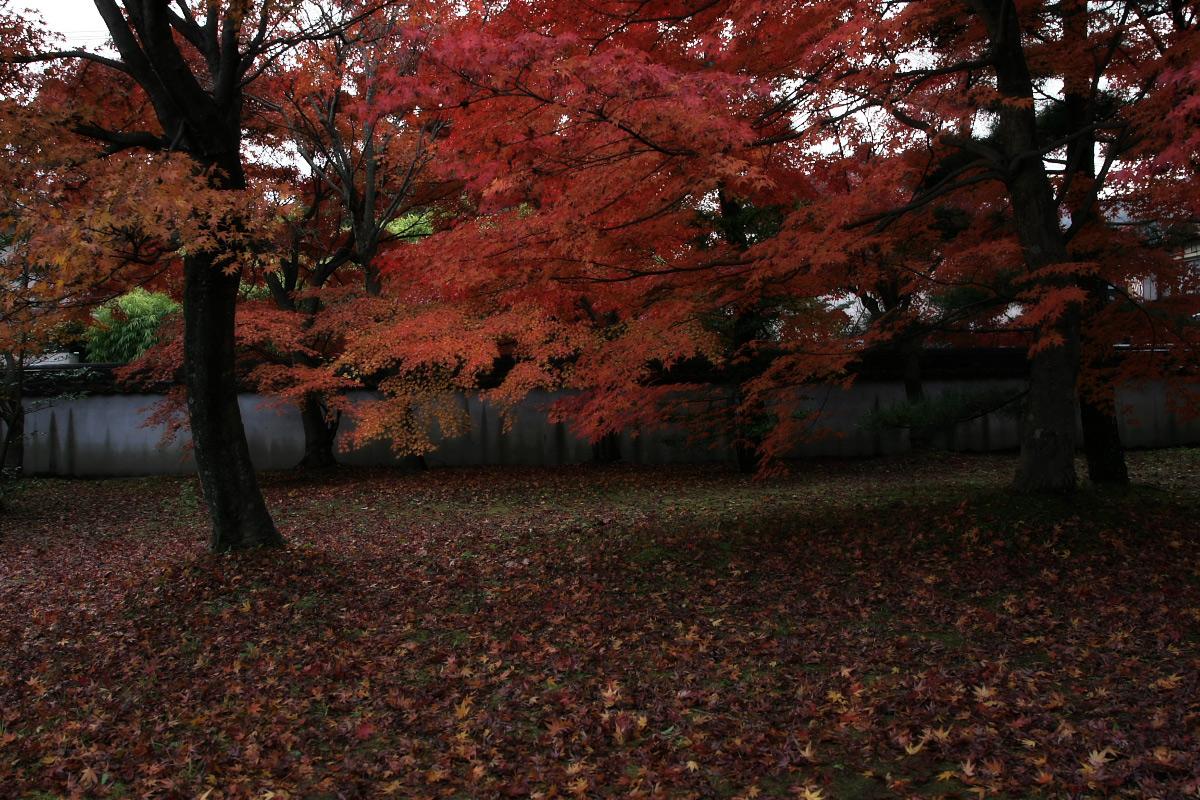 京都 嵐山 4_f0021869_21542831.jpg