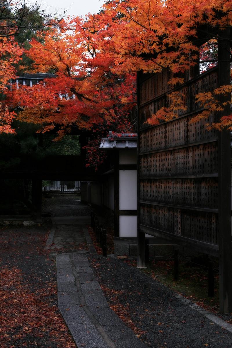 京都 嵐山 4_f0021869_21562798.jpg