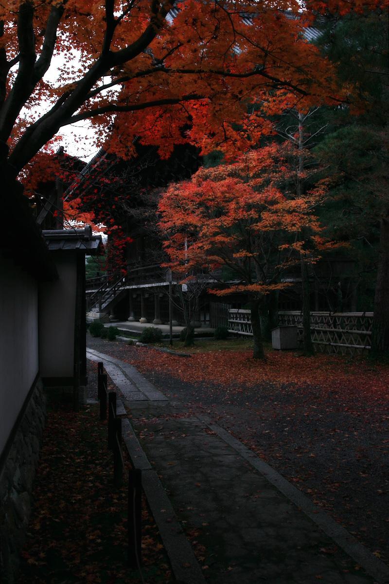 京都 嵐山 4_f0021869_21564970.jpg