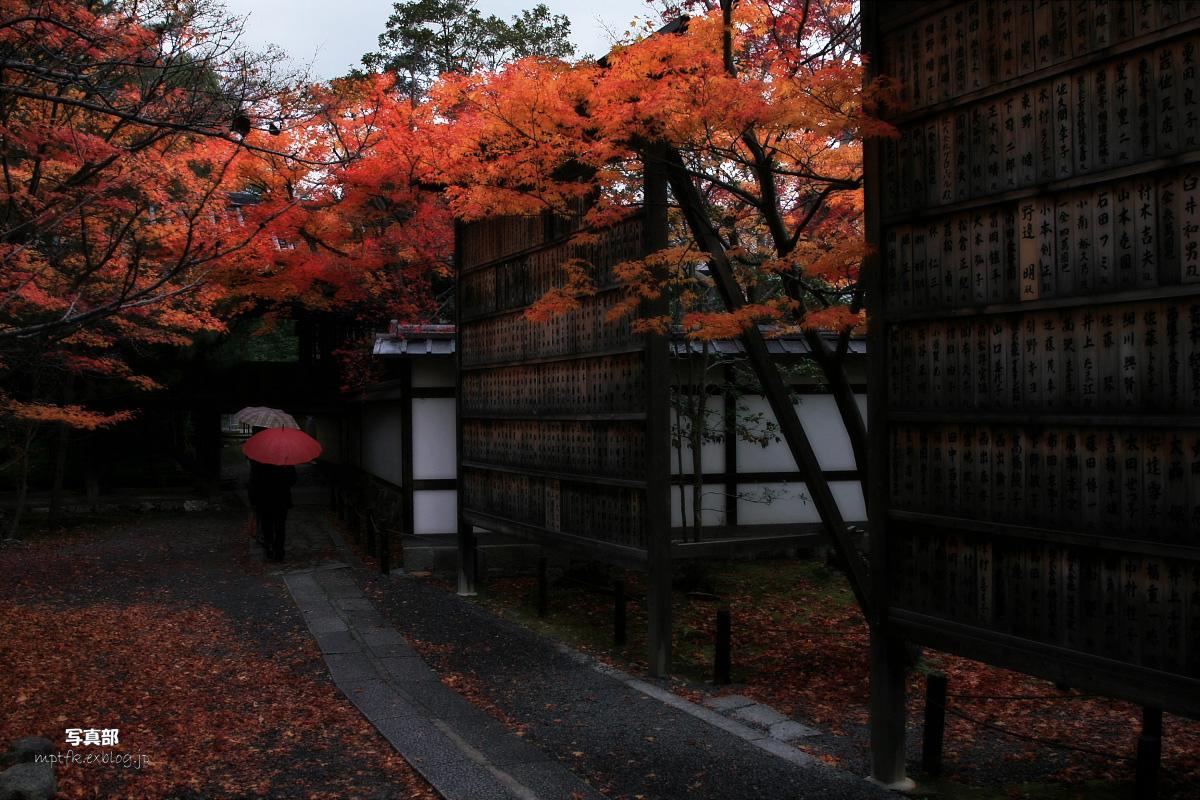 京都 嵐山 4_f0021869_2212738.jpg