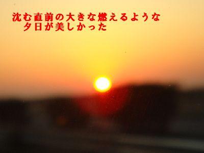 b0101991_1935647.jpg