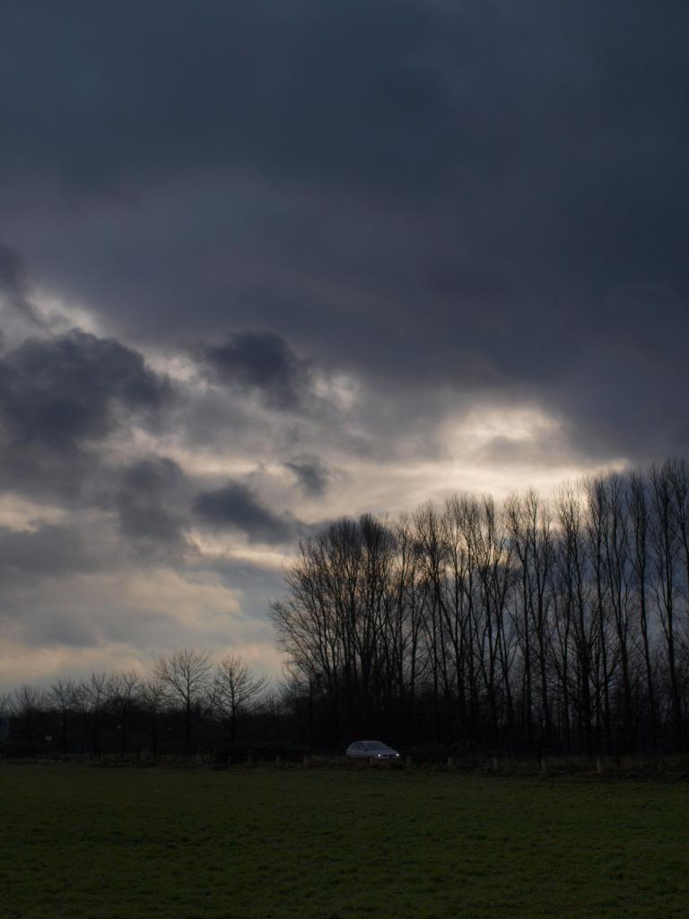 冬至の午後をDistagonで撮ったのだ_b0148617_3583042.jpg
