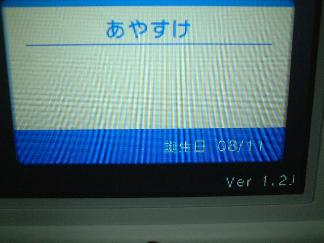 b0030122_23312699.jpg