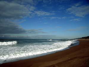 浜地の巨大サンダル_c0019338_21373749.jpg