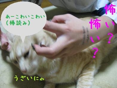 b0151748_12432012.jpg