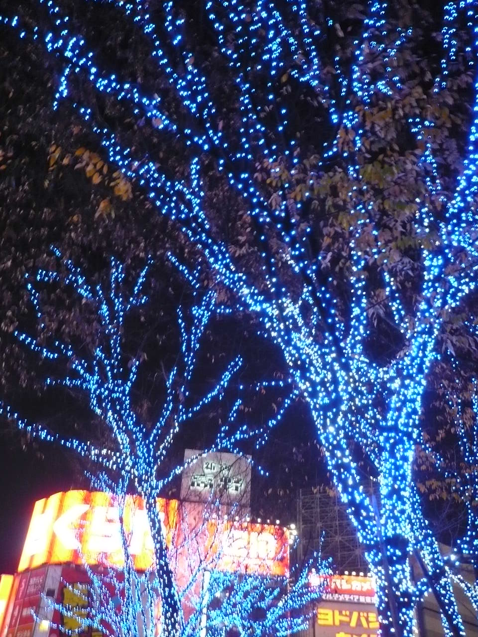 本日の一献 《12月20日》 荻窪 いちべえさんにて_f0193752_2232726.jpg