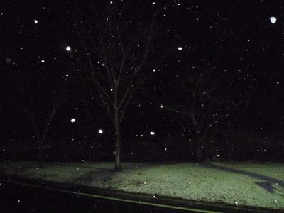 雪です^^_f0194657_2340049.jpg