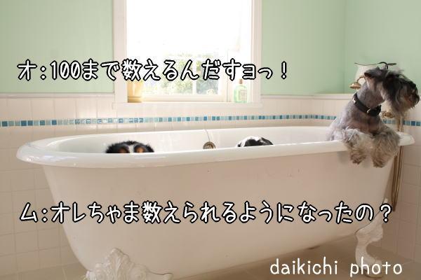 f0187974_1132192.jpg