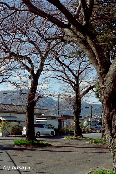 Dec.  22  (Mon)   丹生川駅前  ~ 三岐鉄道 5_f0139991_2138412.jpg