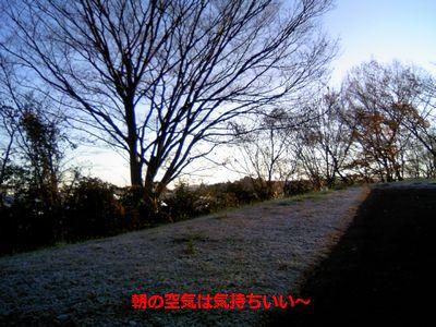 b0148945_18594512.jpg