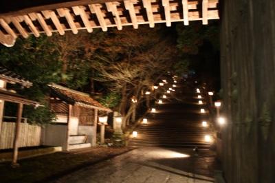 花灯路2008  <京都・夜の嵐山>_c0118352_3313985.jpg