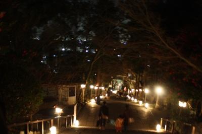 花灯路2008  <京都・夜の嵐山>_c0118352_3502735.jpg