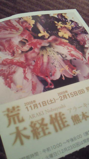 熊本よかと_b0071355_2262334.jpg