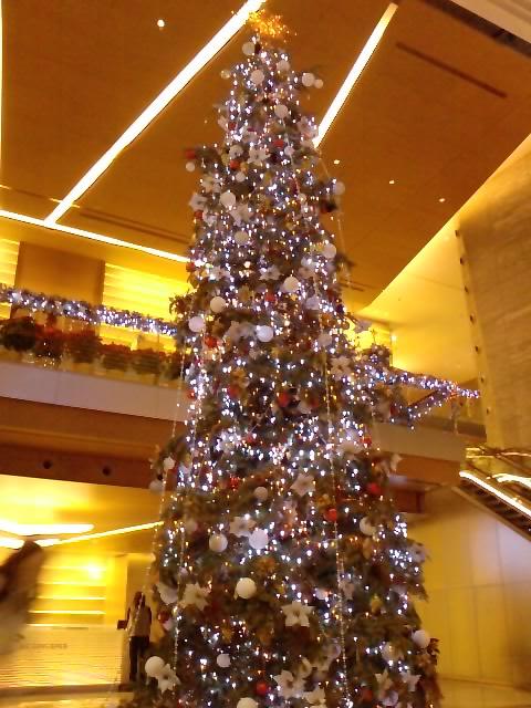 クリスマスイルミネーション 12_e0155771_20114892.jpg