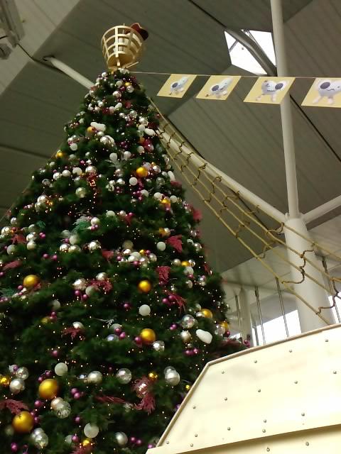 クリスマスイルミネーション 12_e0155771_2025692.jpg