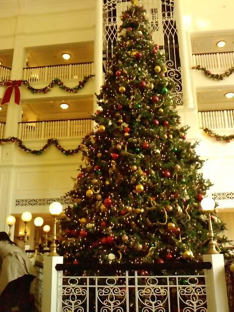 クリスマスイルミネーション 13_e0155771_20474617.jpg