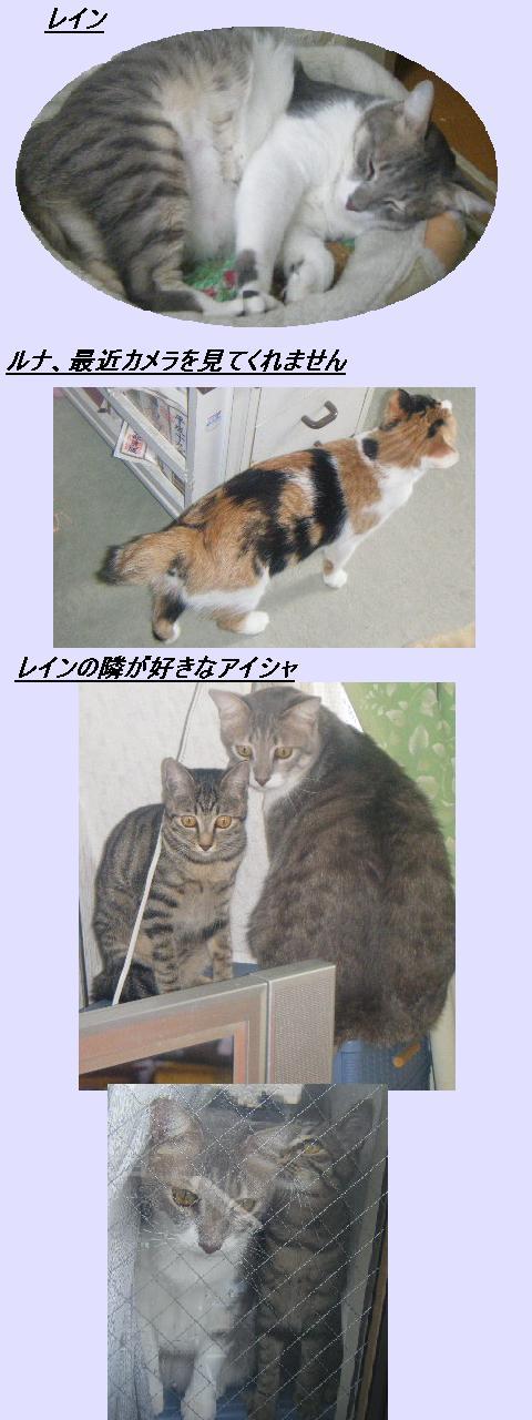 b0112380_19224187.jpg