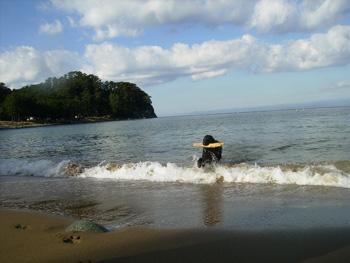 泳ぎおさめ_b0084194_13353663.jpg