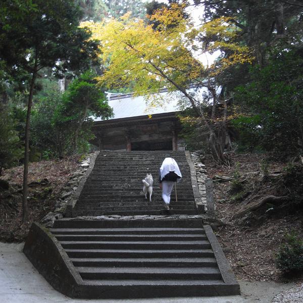 11月15日 おへんろ5日め by GX100_c0049299_18554187.jpg