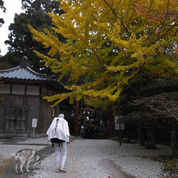 11月15日 おへんろ5日め by GX100_c0049299_18561117.jpg