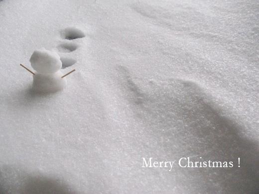 メリークリスマス_f0155600_13535186.jpg