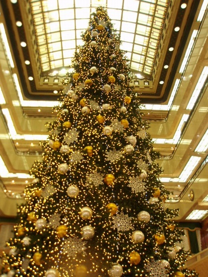 Merry Christmas_c0027701_16151976.jpg