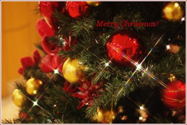 Cake で Merry Christmas!_f0179404_22501541.jpg